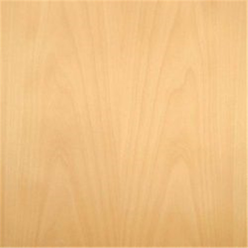 Beech Veneered Plywood