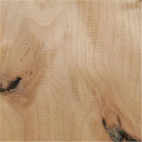 Knotty Alder Veneered Plywood